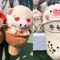 【年宵2019】一文睇晒5大年宵花市!10大精選豬年新春產品