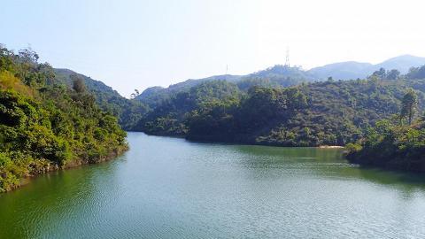 石屎路好易行!香港4大水塘初級郊遊路線