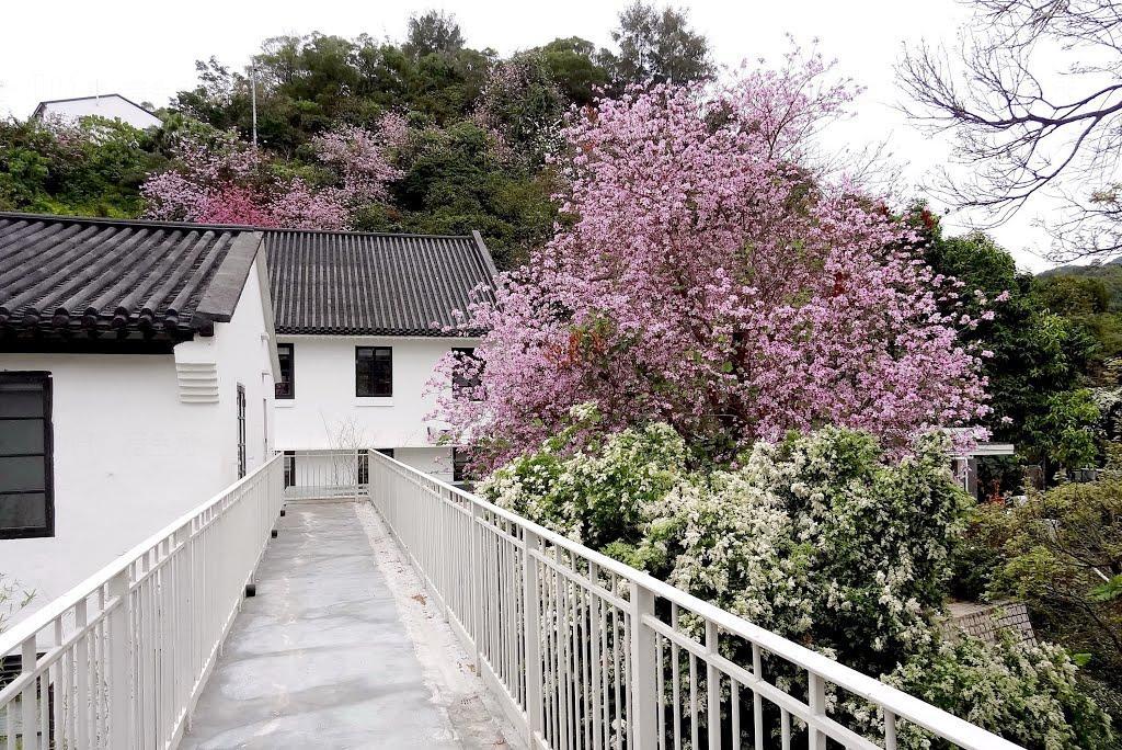 饒宗頤文化館「喜洋羊手藝墟」