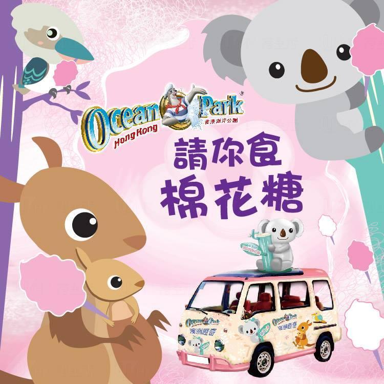 海洋公園 旺角街頭請食樹熊棉花糖