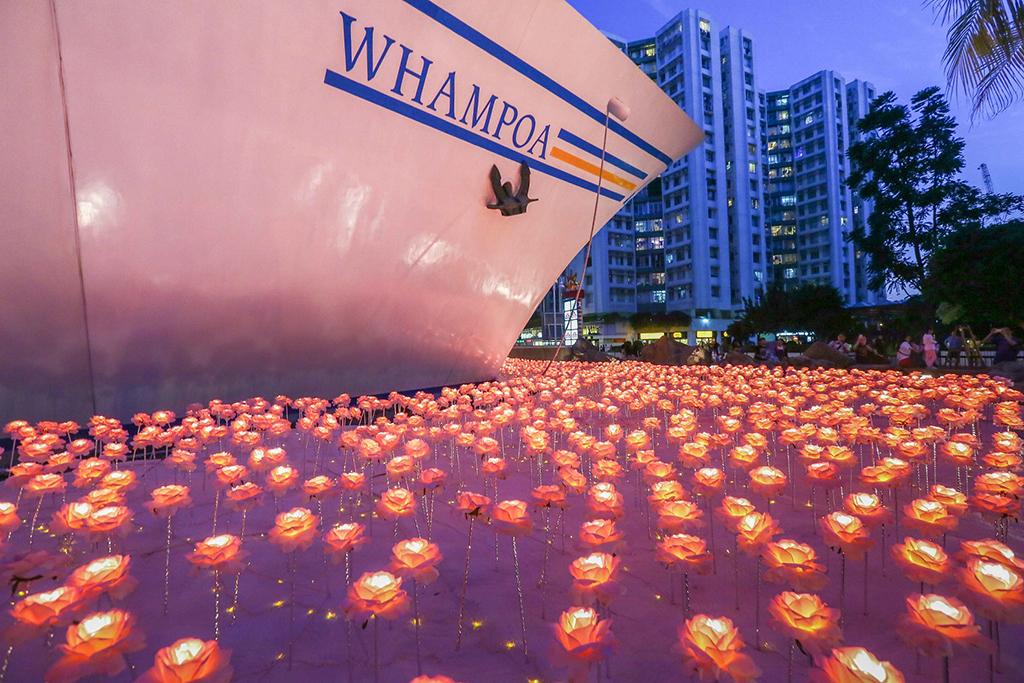 黃埔LED粉紅玫瑰花海 聖誕限定開放