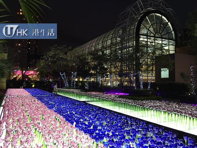1萬8千呎紫藍色花海! 新城市廣場聖誕限定玻璃花園