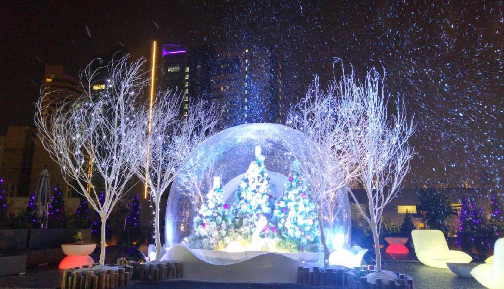 滄海遺珠!荔枝角聖誕飄雪花園