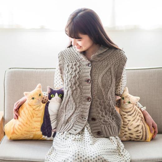 享齊貓之福!貓奴必有的貓咪後宮抱枕