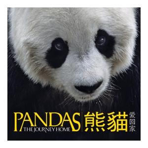全天域電影《熊貓愛回家》
