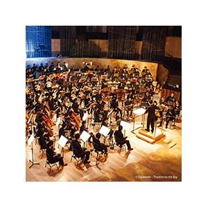 新加坡華樂團音樂會
