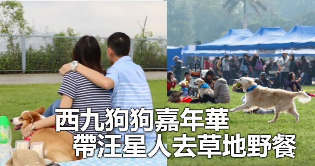 西九狗狗嘉年華 帶汪星人去草地野餐