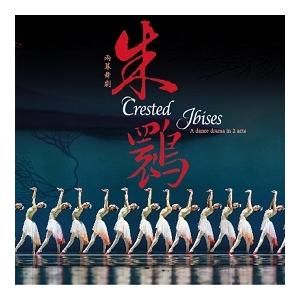 上海歌舞團「舞劇《朱䴉》」