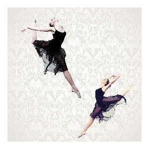 芭蕾舞導賞講座系列 — 名著.美樂