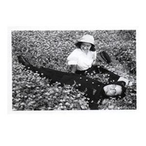 《我對青春無悔》(專上放映場) ─ 世界電影經典回顧 2017「日本電影巨匠紀念展︰仁與義—黑澤明之道」