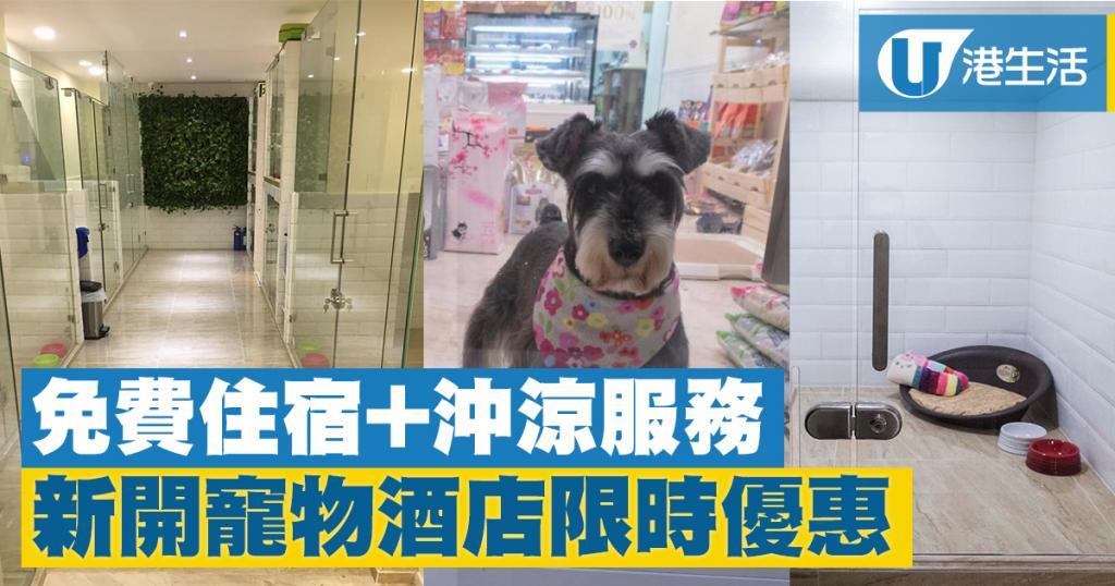 免費住宿+沖涼服務!新開寵物酒店限時優惠