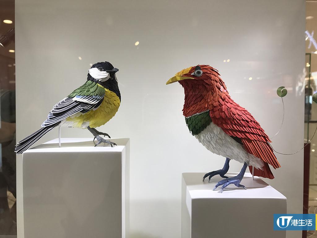 尖沙咀免費睇紙雕展 重現逾30種美洲雀鳥