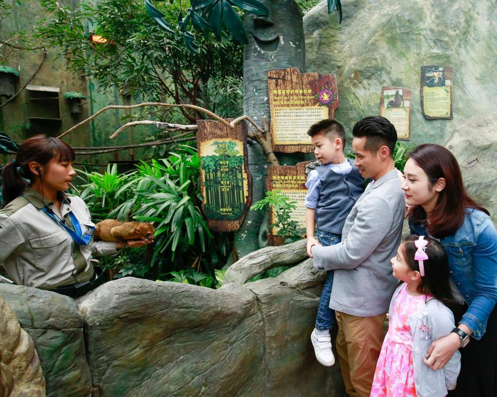 【海洋公園】海洋公園歷險課程 參觀海象屋企/幫海豹準備野食