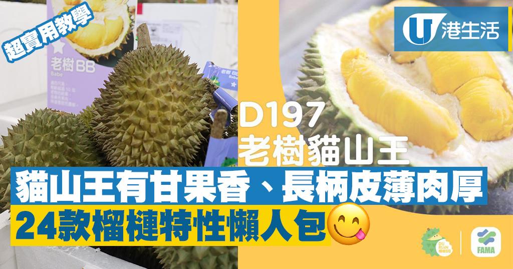 榴槤達人分享!教你分24種必食馬來西亞榴槤   港生活 - 尋找香港好去處