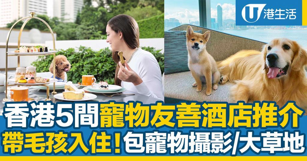 香港5大寵物友善酒店推介!可攜帶寵物入住 包寵物攝影/戶外草地/寵物用餐區