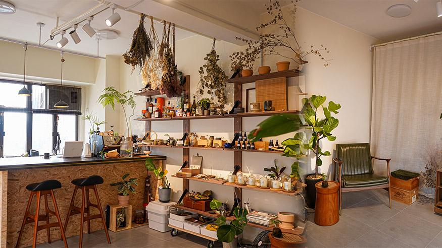【觀塘好去處】鬧市綠洲觀塘植物店 歎緣份咖啡/選製獨特盆景