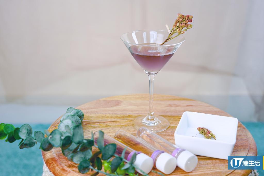 Y Cocktail & Mocktail雞尾酒DIY套裝 有齊材料+調酒器直送到家輕鬆自製雞尾酒