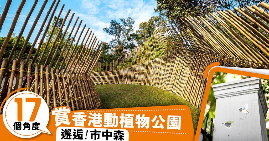17個 藝術角度遊香港動植物公園 邂逅!市中森