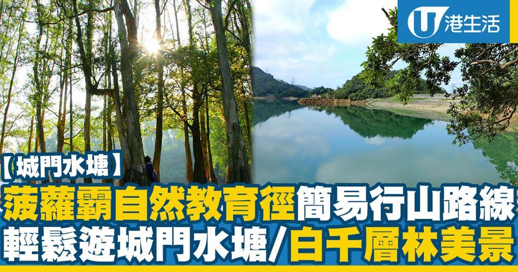 【城門水塘】菠蘿霸自然教育徑簡易行山路線 輕鬆遊城門水塘/白千層林美景
