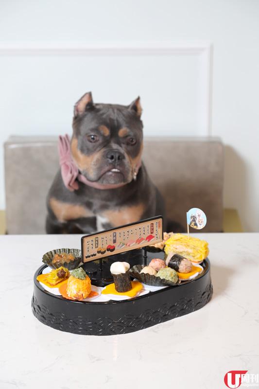 【寵物友善餐廳】大埔狗狗餐廳 歎迴轉壽司、蒸籠點心