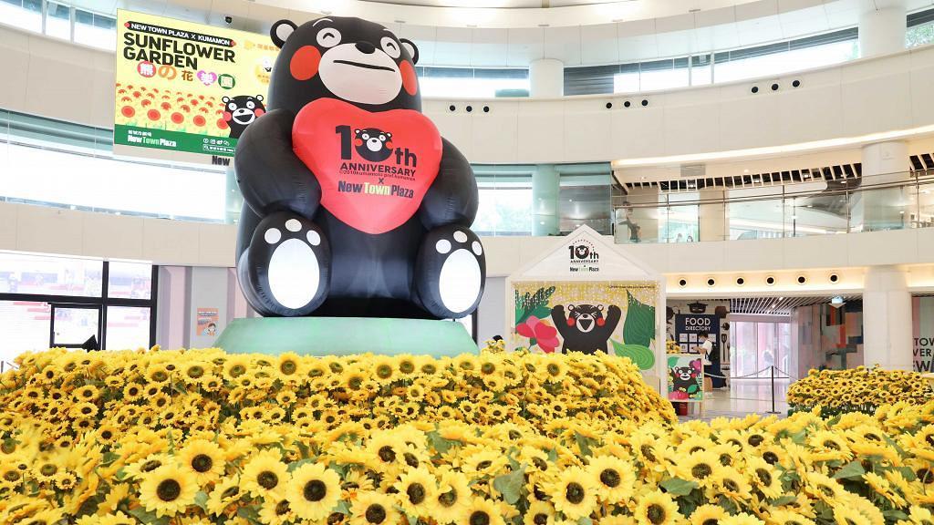 【沙田好去處】全港首個室內向日葵花海登陸沙田!4米高熊本熊坐鎮/6大影相位