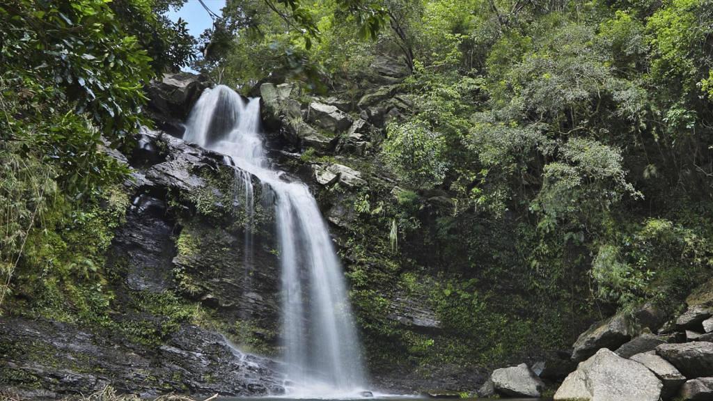 【郊遊好去處】新界北區新娘潭自然教育徑行山路線推介! 1小時路線輕鬆欣賞壯麗瀑布