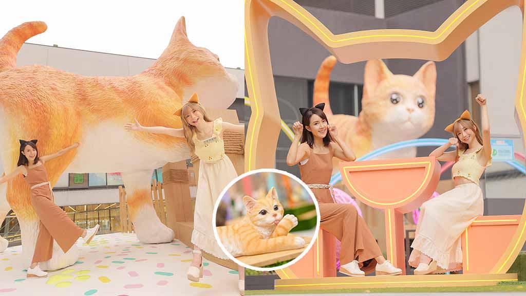 【葵芳好去處】新都會廣場中秋喵喵遊園會設6大貓咪打卡位!5米高喵星人/星空彩光騷/主子美食街