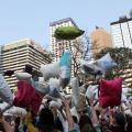 自備枕頭!國際香港枕頭大戰2015