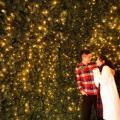 九龍灣聖誕市集登場!星光花園+3.5米高聖誕樹