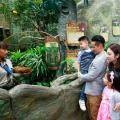 【香港仔好去處】海洋公園歷險課程 參觀海象屋企/幫海豹準備野食