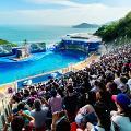 【海洋公園】海洋公園8大園區設施全面睇!機動遊戲/急流/水族館/海陸動物