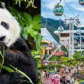 【海洋公園】HKTV mall香港海洋公園限時門票優惠 成人門票半價$240/張