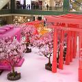 【新年好去處2019】日本幸福車站登陸沙田!幸運占卜機/櫻花列車/神社