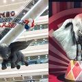 【銅鑼灣好去處】6米小飛象空降銅鑼灣  270°投影飛越香港/免費睇馬戲表演