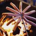 BBQ燒烤懶人神器一次過燒10條腸 傘形設計特設伸縮功能夠哂方便