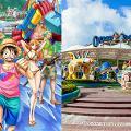 【海洋公園】海賊王夏水戰7月登陸海洋公園!One Piece影相位/美食/期間限定店