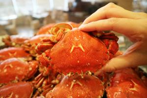 紅磡酒店海鮮主題自助餐 主推可持續發展海產+任食生蠔蟹腳