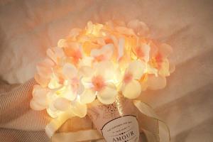 母親節禮物推介!韓國繡球花小夜燈 永久保存掛牆/座枱擺設