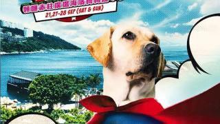 今年活動以「英雄狗狗」為主題
