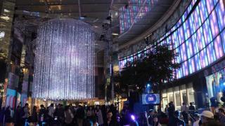 睇得又玩得! 尖沙咀4D互動聖誕樹