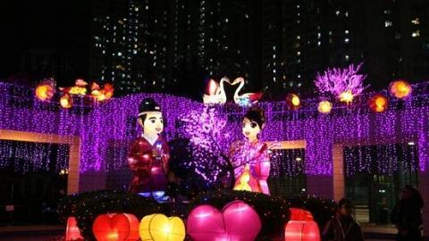 2015新界東元宵綵燈會