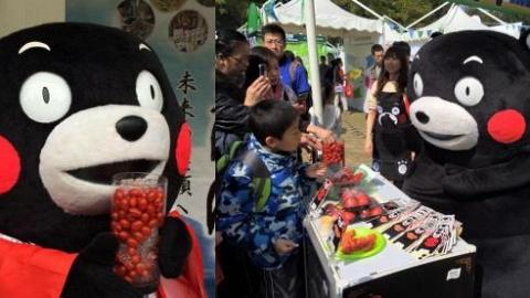KUMAMON現身渣打馬拉松 派新鮮熊本番茄
