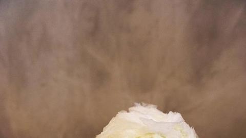 牛油果新食法!大大碗牛油果刨冰