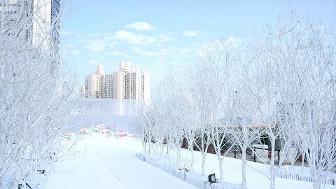 冬日限定!全港首個戶外極光飄雪體驗