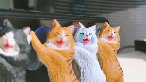 韓國設計可憐樣貓咪手機托架!慘貓喊住幫手托電話