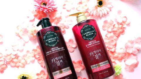 韓國大牌新系列 獨家專利技術 持久修護染燙損傷頭髮