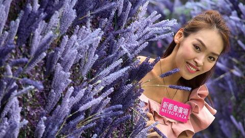 【葵芳好去處】葵芳彩虹露天花海!薰衣草迷宮/粉紅玫瑰花牆