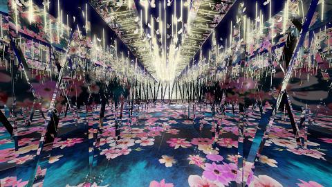 【新年好去處2019】上水化身拼布粉嫩系花園 光影花花長廊/3D拼布豬仔
