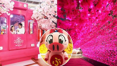 【新年好去處2019】全港商場新春佈置+市集晒冷!逾200個影相位/卡通/限定店