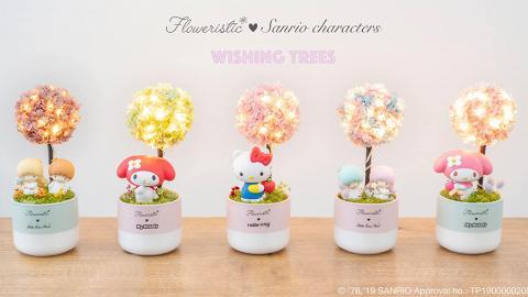 Sanrio全新保鮮花許願樹夜燈!鮮花染色製作/可保存最少1年